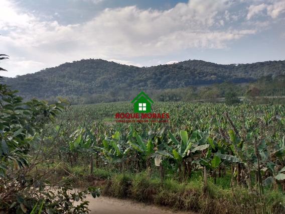 Fazenda Miracatu 30alq Bananal Pasto Riacho Nascente Ref0128