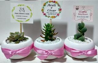Recuerdos Suculentas Cactus Matrimonio Baby Shower Bautizo