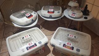 Incubadora De Huevos Marca Rcom En Perú