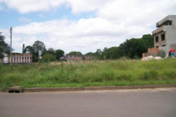Terreno Em Ipanema - Pa1482