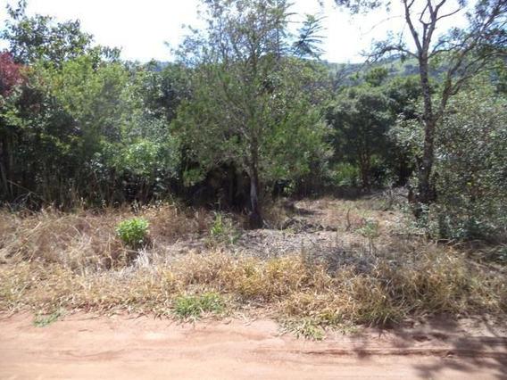 Terreno À Venda, 4620 M² - Ribeirão Dos Porcos - Atibaia/sp - Te0880