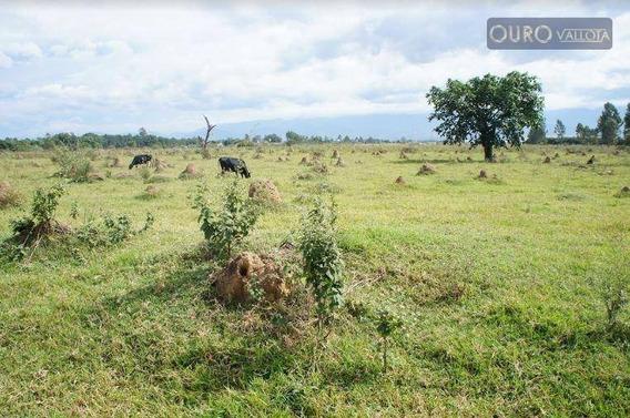 Terreno Rural Com 800.000m² - Te 200307v - Te0199