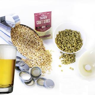 Kit De Insumos Receita Cerveja Artesanal Cream Ale 20l / 40l