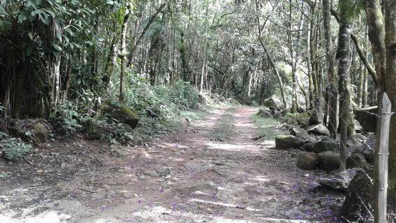 Serrinha Do Alambari - Terreno