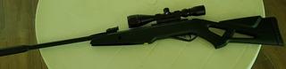Vendo Rifle De Diabolos 5.5mm. Whisper X Vampire Gamo
