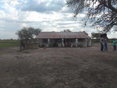 Campo De 1700 Hectareas, Casco, Mangas, Corrales Y Galpon