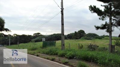 Belíssima Área Industrial/comercial Com 5.000m² A Ser Subdividida Da Área De 16.841m² Em Araucária - Ar0026