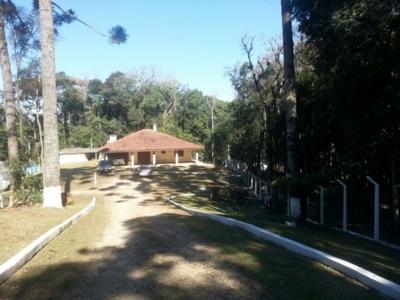 Chacara - Centro - Ref: 8137 - V-bg80668001