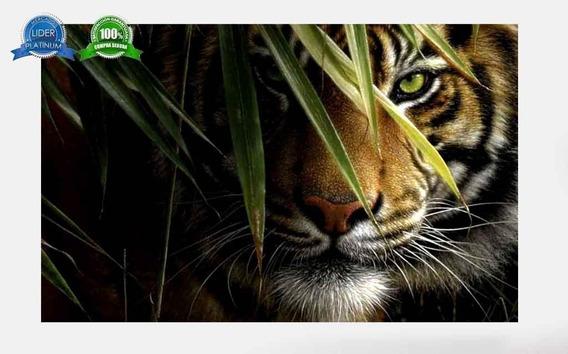 Cuadro Tigre Animales 50x70 Otros Diseños Tela Canvas