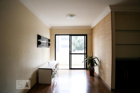 Apartamento Para Aluguel - Vila Mascote, 2 Quartos, 65 - 893109712