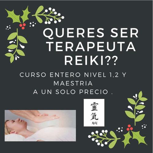 Curso Terapeuta Reiki Usui (todos Los Niveles )