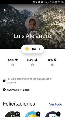 Chofer Uber (busco Coche)