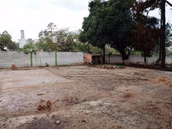 Area - Ipatinga - Ref: 53289 - L-53289
