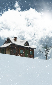Fundo Infinito Temático Natal 30 Tecido Dry-fit 1,76 X 2,75m