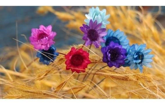 Sempre Vivas Naturais Decorações 2.000 Flores Selecionadas