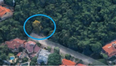 Terreno/lote Residencial Residencial Para Venda, Ipanema, Porto Alegre - Te0377. - Te0377-inc
