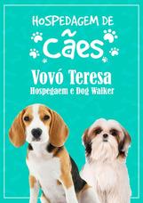 Vovó Teresa Hospedagem De Cães E Pets Dog Walker Brasilia Df