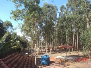 Vende Sítio Lado Rodovia Santa Rosa-são Simão Terreno Plano C/ Eucalipto Pomar Formando Área Churrasco Fogão A Lenha . 269 Mil Oportunidade! - Si0001