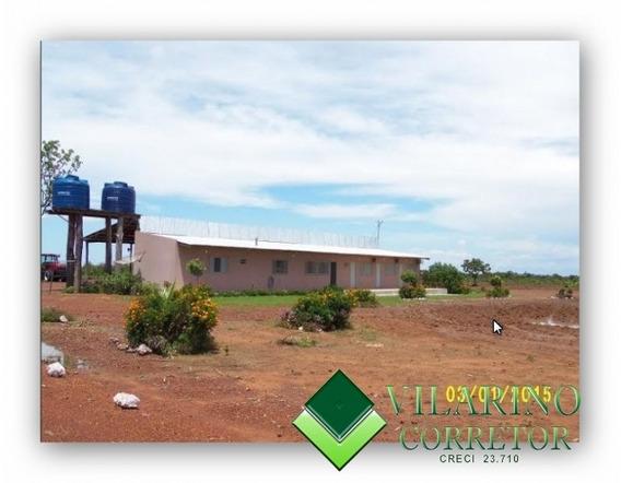 Fazenda Nova Brasilandia / Mt - 1318v