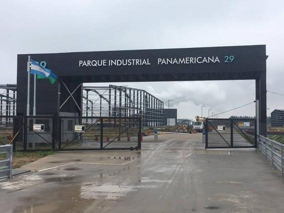 Deposito En Alquiler A Estrenar - Centro Industrial Km.29 Tigre