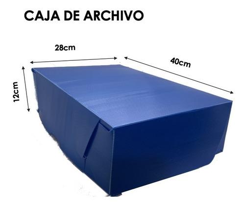 Caja De Archivo De Plástico Corrugado 12x28x40cm (pack 10u.)