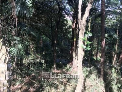 Terreno No Condomínio Iolanda - 3754-1