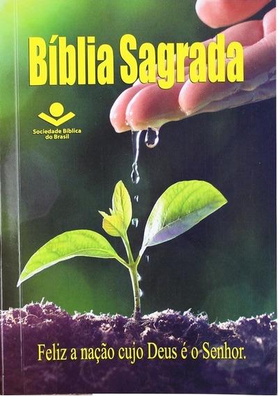 Bíblia Sagrada Para Evangelismo Soc. Bíblica Brasil Frete 9