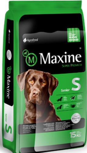 Imagen 1 de 4 de Maxine Senior Super Premium 21kg + 6 Pate + 6 Pagos