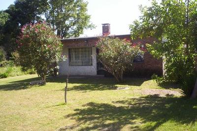 0e0ca127pp Parque Del Plata