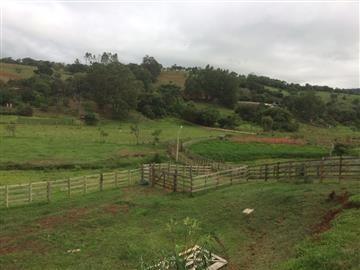 Fazenda Cambuí Mg Aceita Permuta