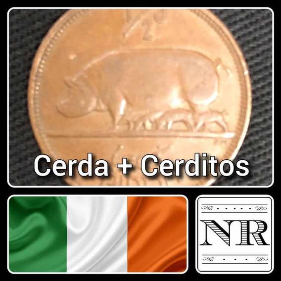 Irlanda - 1/2 Pingin - Año 1928 - Km # 2 - Cerda Y Cerditos