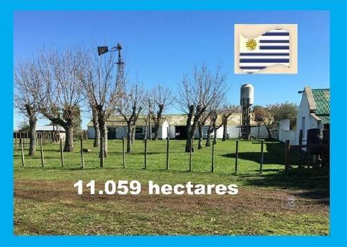 Fazenda Com 11.059 Hectares Em Paysandú - Uruguai