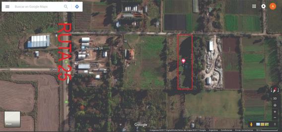 Pilar Zona Industrial 7000 M2 Con Casa Y Oficina 145 M2 Cub