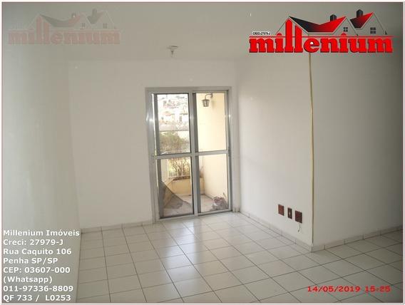Apartamento Para Aluguel, 2 Dormitórios, Cangaíba - São Paulo - 733
