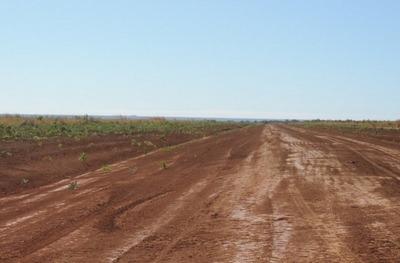 Fazenda Em Alto Parnaíba - Ma, Dupla Aptidão - 82
