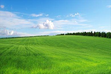 Ref.: 4472 - Terreno Em Cotia, No Bairro Caucaia Do Alto