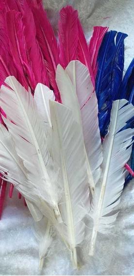 Pluma Pato Blanca O Colores 25 A 30cm Largo X 10unidades