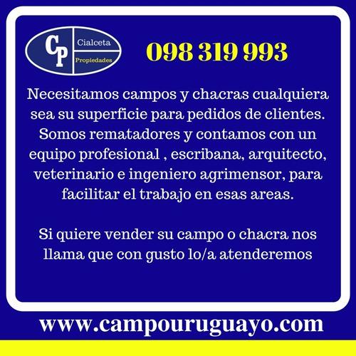 Venta De Campos Y Chacras