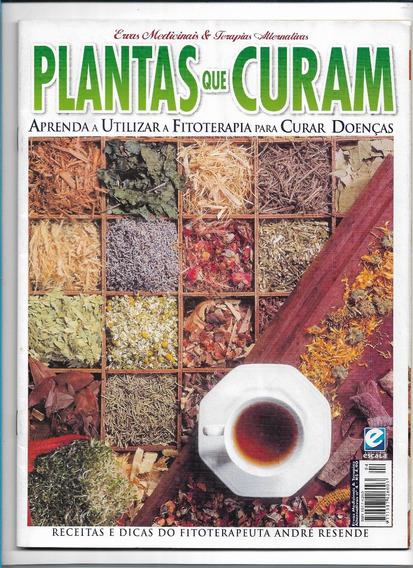 Plantas Que Curam Fitoterapia Revista Ed 4 Ervas Terapias Al