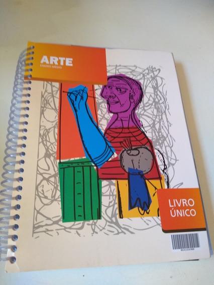 Arte Ensino Médio Livro Único