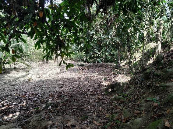 Terreno Junto Al Río Casacay (balneario La Cocha)