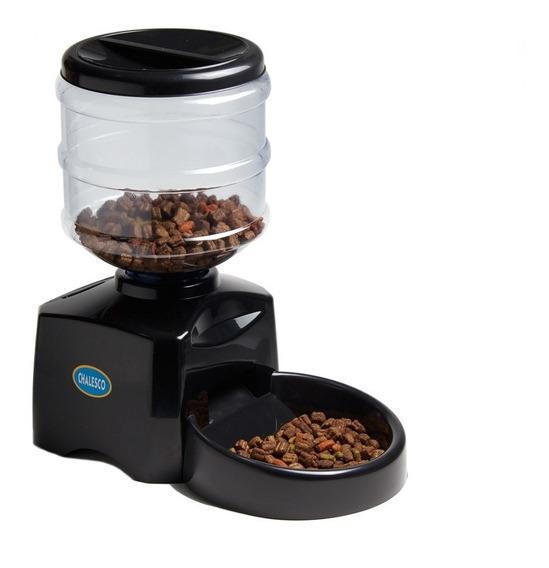 Comedor Cães Gatos 5 Litros Automático Comedouro Cachorro