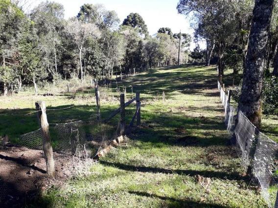 Chácara Para Venda, Rural - 780162