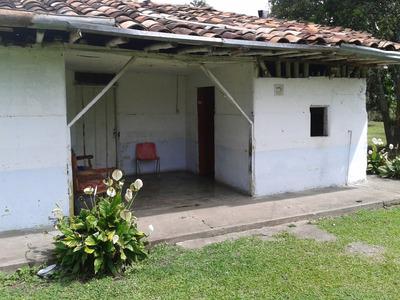 Vende Finca Quimbaya Quindio