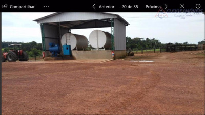 Fazenda Rural À Venda, Centro, Ipiranga Do Norte. - Fa0047