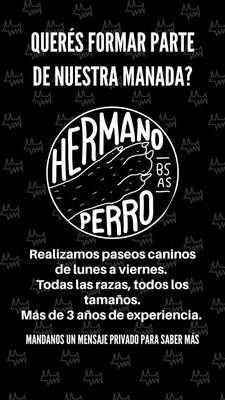 Paseadora Canina Bvr - Hermanoperro