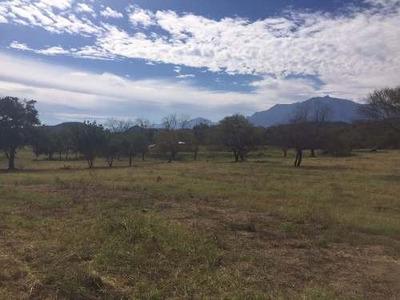 Rancho Ganadero En Venta 25 Hectareas Linares Nuevo Leon