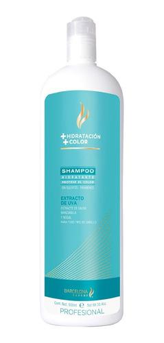 Imagen 1 de 1 de Shampoo Hidratante Protector Color Libre De Sulfatos  900ml