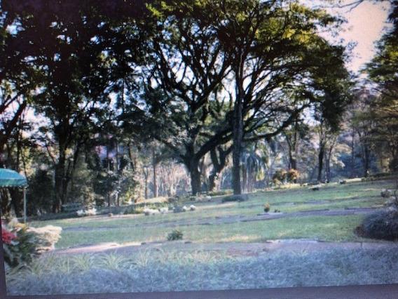 Jazigo Cemitério Paz