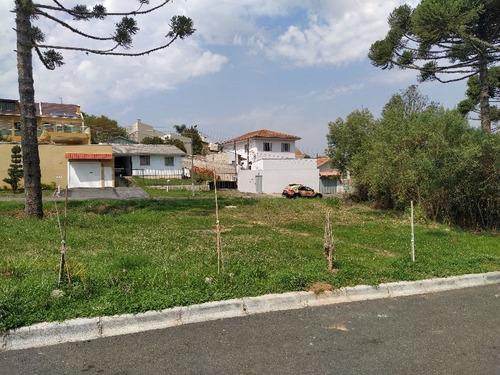 Imagem 1 de 6 de Terreno - Pilarzinho - 448
